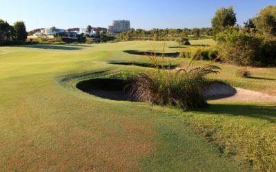 QHA Golf Day  - March 2018