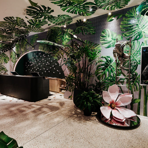 Insight: Ovolo The Valley